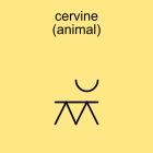 cervine (animal)