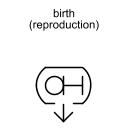 birth (reproduction)