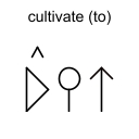 cultivate (to)
