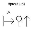 sprout (to)